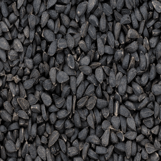 how to lose weight fast with black cumin seeds