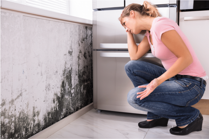 signs of mold in a home